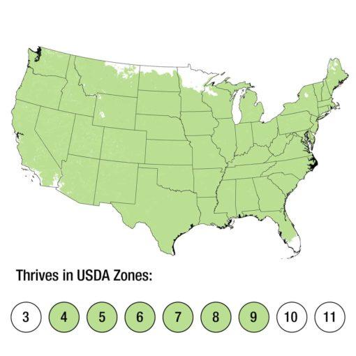 USDA Zones 4-9 Map