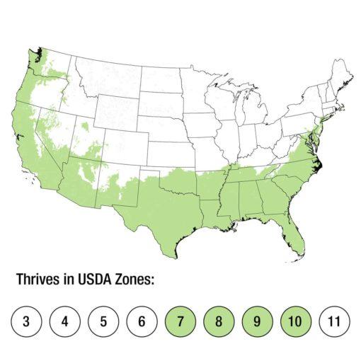 USDA Zones 7-10 Map